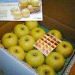 りんご、ふたたび