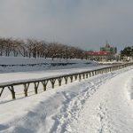 函館旅2011(その6)