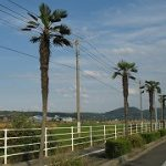 岡山・鳥取へ4