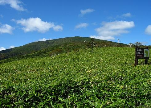 藻琴山登山02