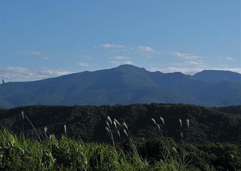 積丹岳13