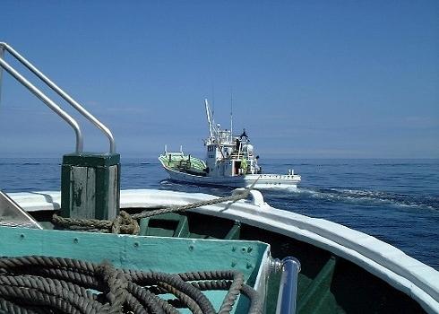 知床自然観察船10