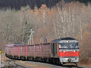 タマネギ列車1